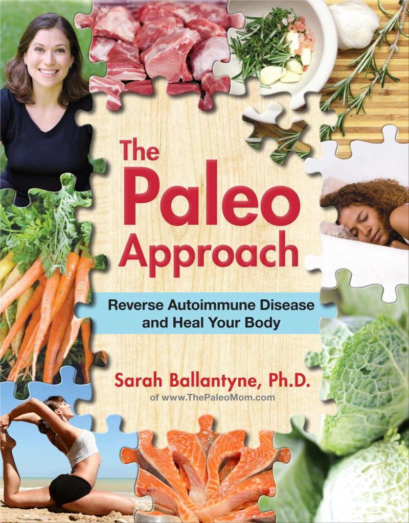 The Paleo Approach by Sarah Ballantyne