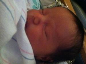 Paleo - michael newborn