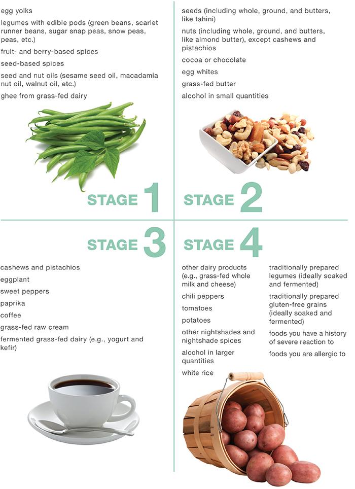 Reintro Stages