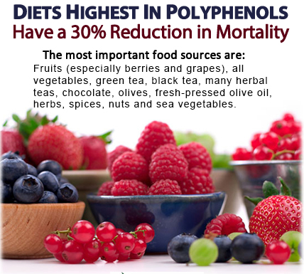 polyphenols_top_sources