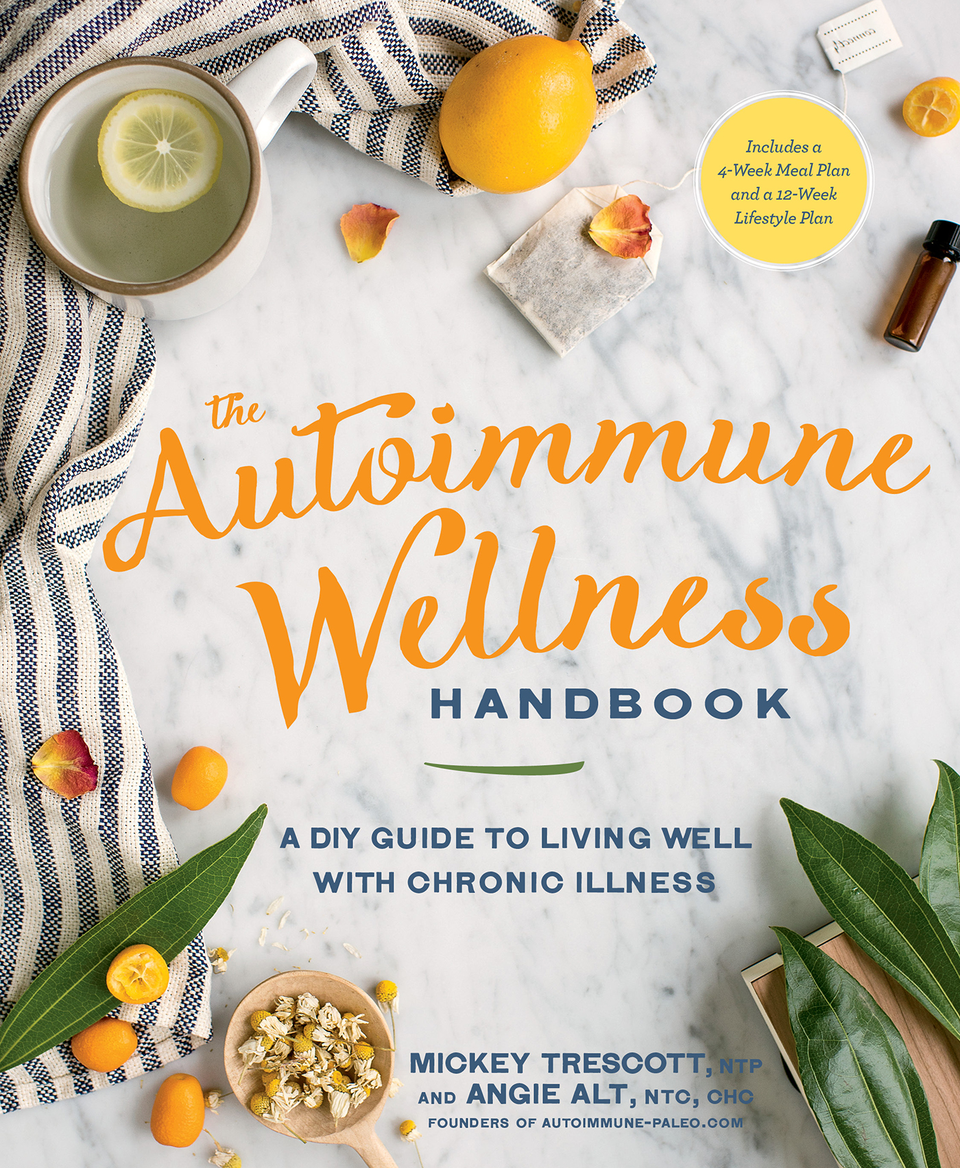 the-autoimmune-wellness-handbook-the-Paleo-mom