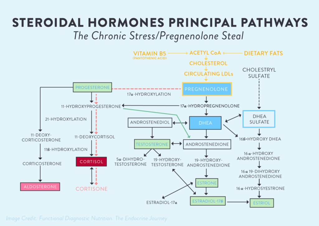 pregnenolone-steal-the-Paleo-mom-what-is-adrenal-fatigue-01