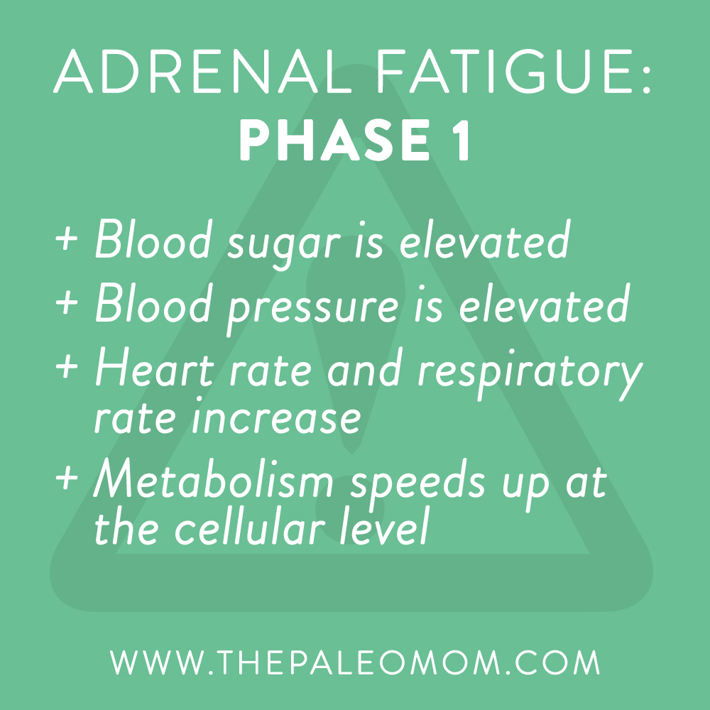 what-is-adrenal-fatigue-demistifying-adrenal-fatigue-phase-1-the-Paleo-mom