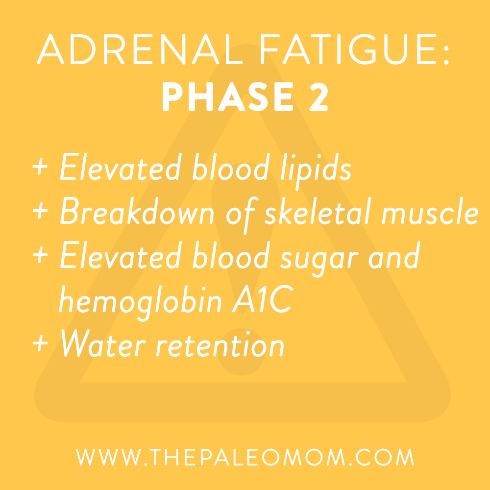 what-is-adrenal-fatigue-demistifying-adrenal-fatigue-phase-2-the-Paleo-mom