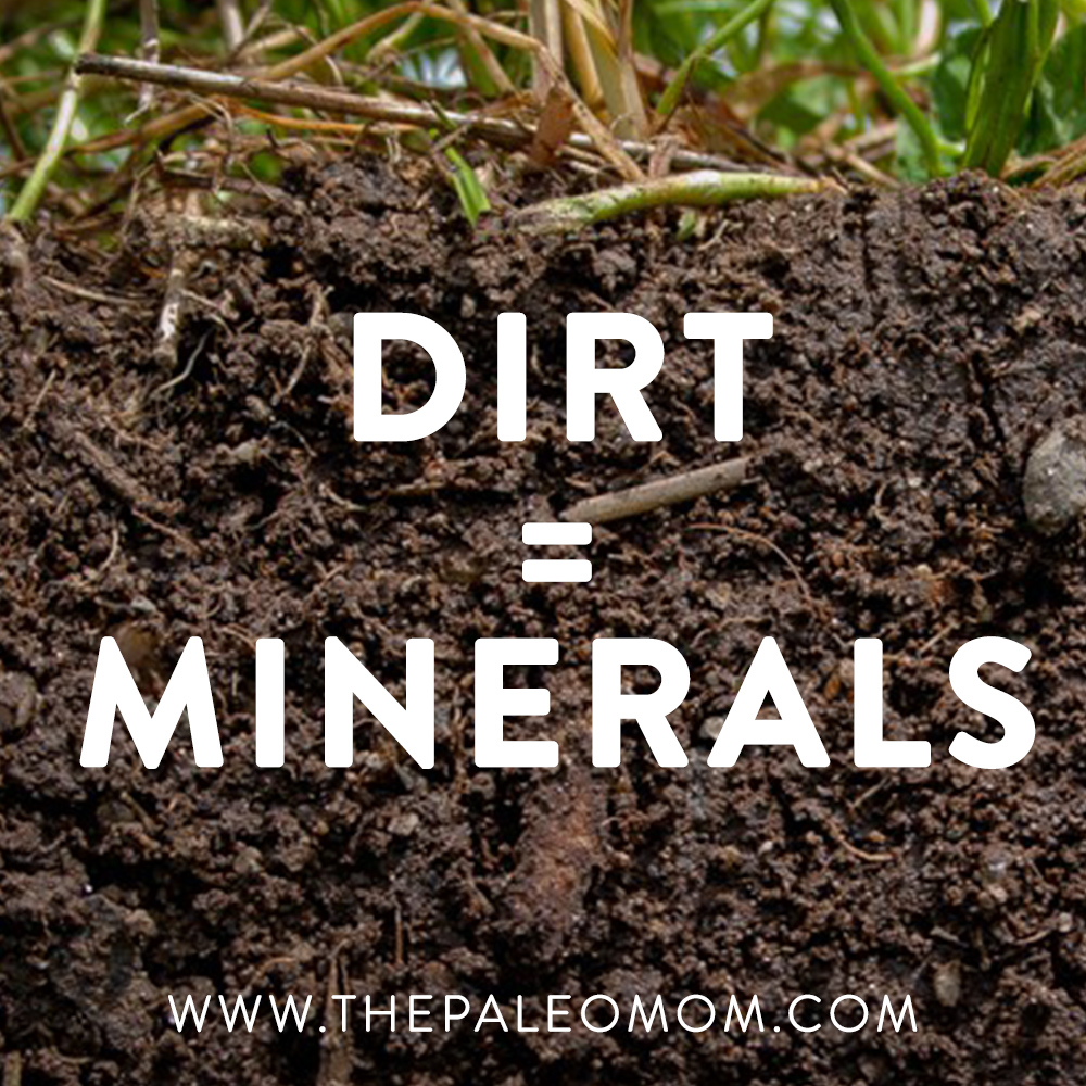 the-benefits-of-eating-dirt-dirt-is-minerals-the-Paleo-mom