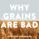 why grains are bad
