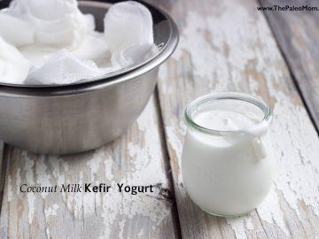"Coconut Milk Kefir ""Yogurt"""