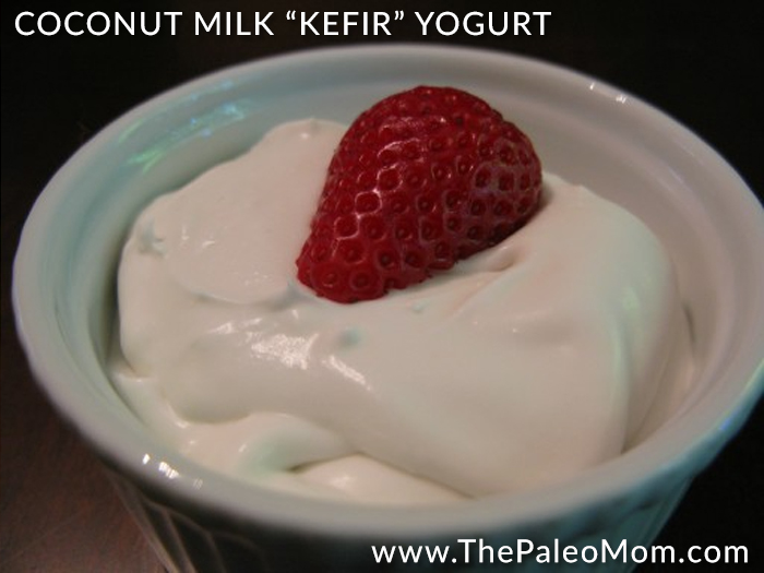Coconut Milk Kefir Yogurt