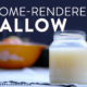 home rendered tallow