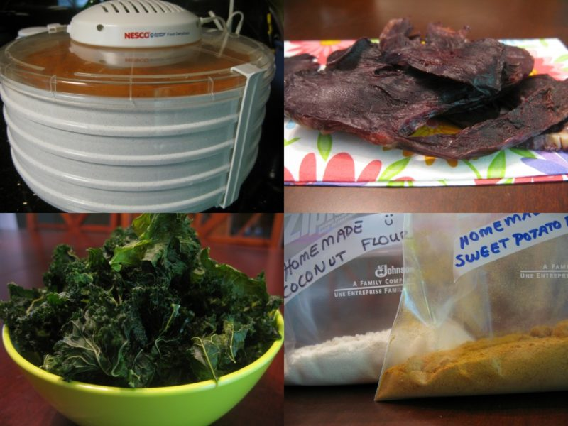 Falling in love with my food dehydrator the paleo mom forumfinder Choice Image