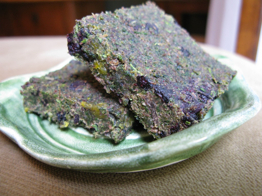 » The Paleo Mom Pemmican (a.k.a. Caveman Protein Bars)