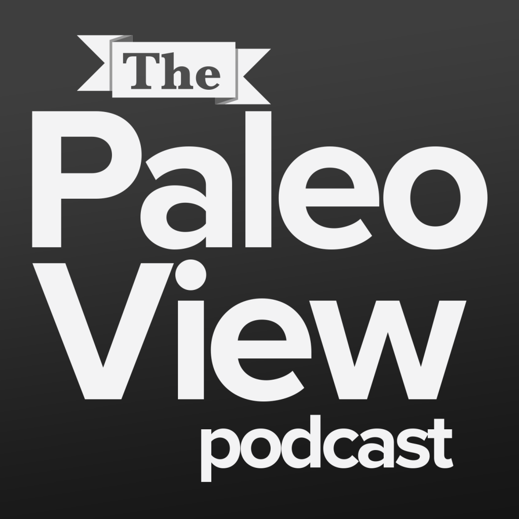 ThePaleoView