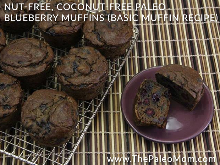 Nut-Free Coconut-Free Paleo Blueberry Muffins Basic Muffin Recipe