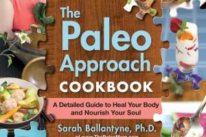 ThePaleoApproachCookbook 1