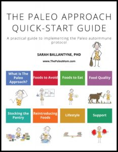 The Paleo Approach Quick-Start Guide by Sarah Ballantyne