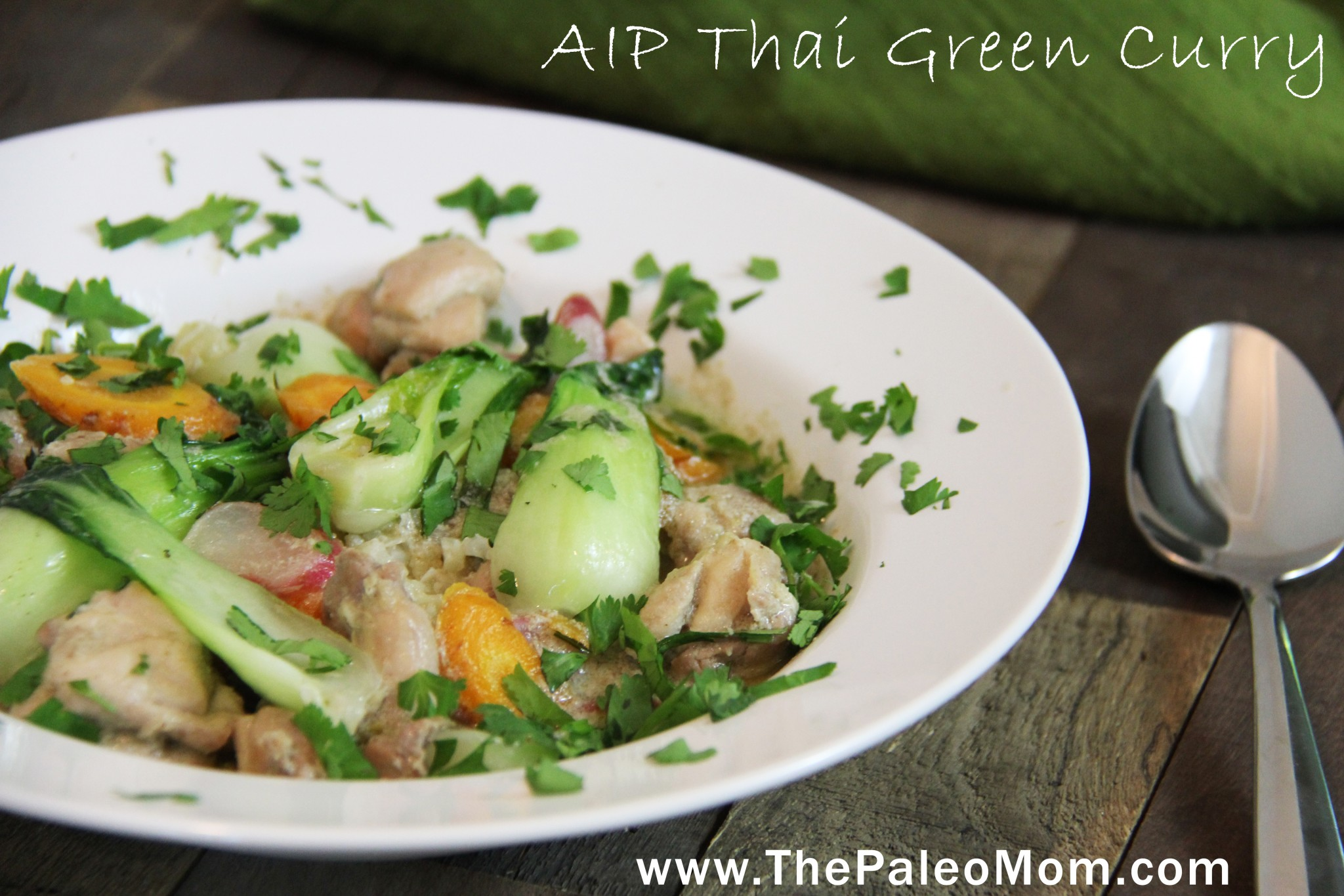 Thai Green Curry (AIP-Friendly!) ~ The Paleo Mom