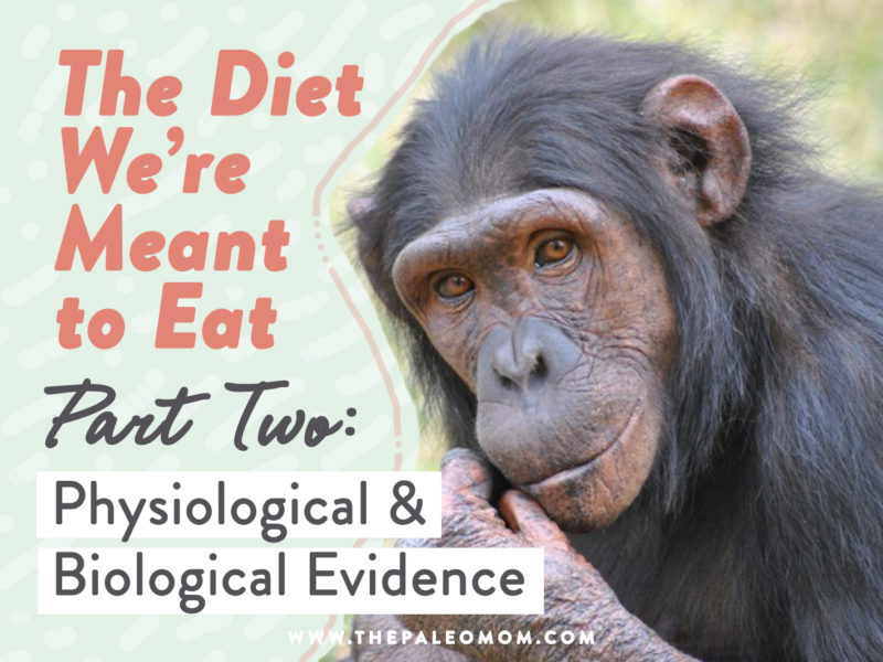 physiological and biological diet