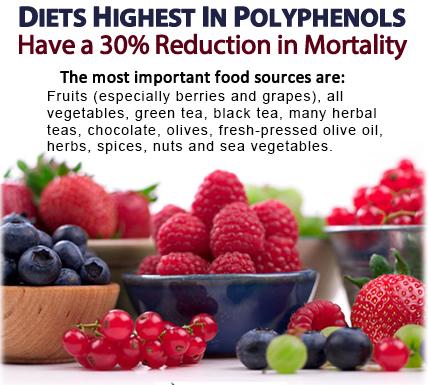 polyphenols_top_sources