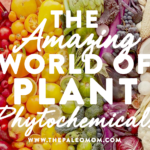 the-amazing-world-of-plant-phytochemicals