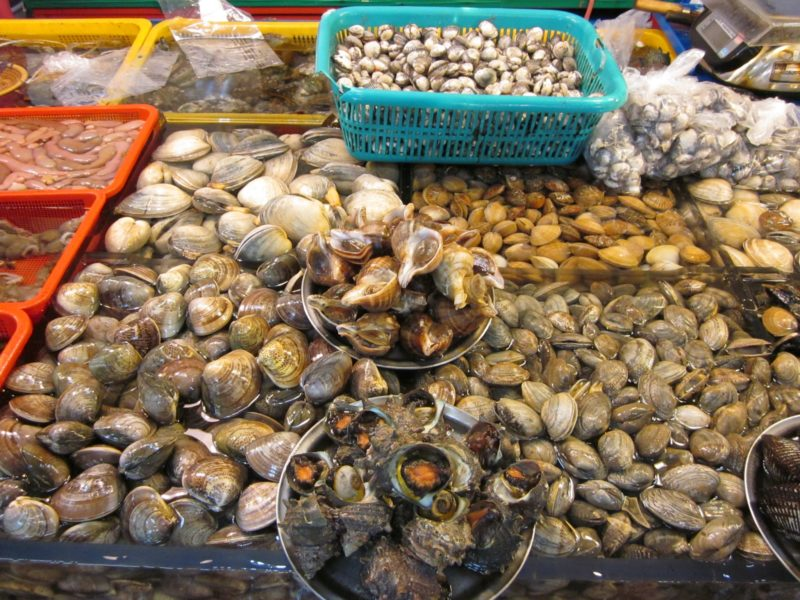 Shellfish: Oysters, Clams & Mussels - Are they Toxic or