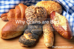 Why Grains are Bad Part 1