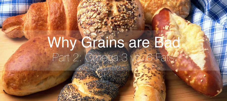 Why Grains are Bad Part 2