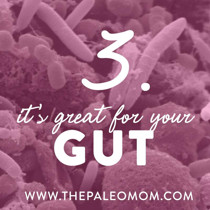 5 Reasons to Eat More Fiber ~ The Paleo Mom