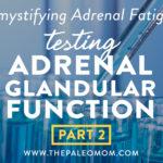 Demystifying Adrenal Fatigue Pt 2