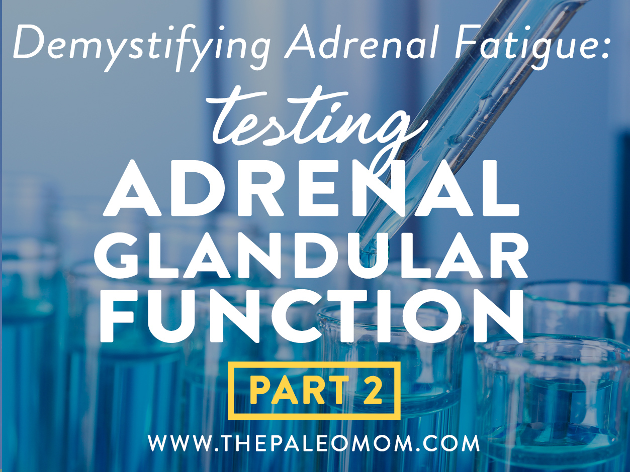Demystifying Adrenal Fatigue Pt 2