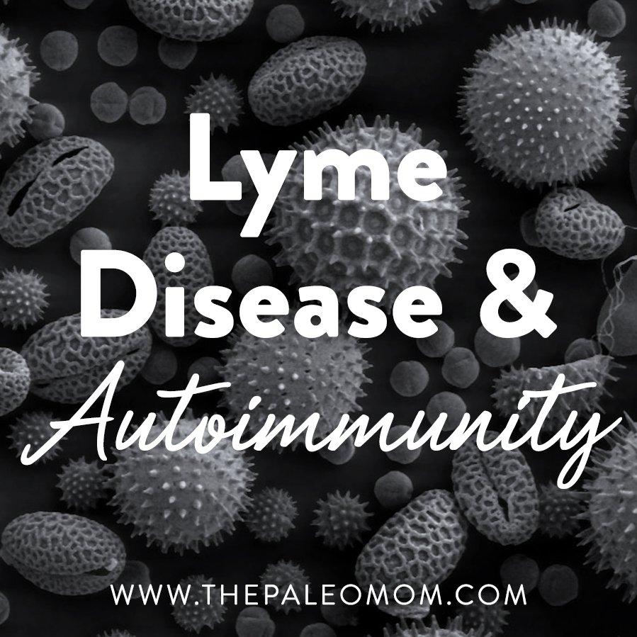 Understanding Lyme Disease: A Primer ~ The Paleo Mom