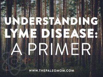 Understanding Lyme Disease a Primer