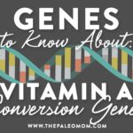 vitamin a conversion genes