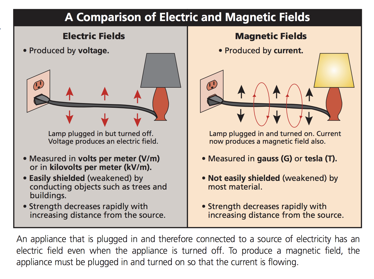 What's the link between electromagnetic fields and disease?