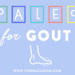 paleo for gout