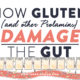 How-Gluten-(and-other-Prolamins)-Damage-the-Gut
