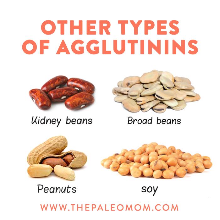 agglutinins