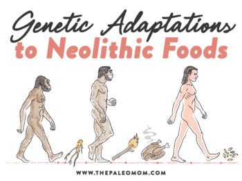 Genetic Adaptations to Neolithic Foods – Understanding Bioindividuality
