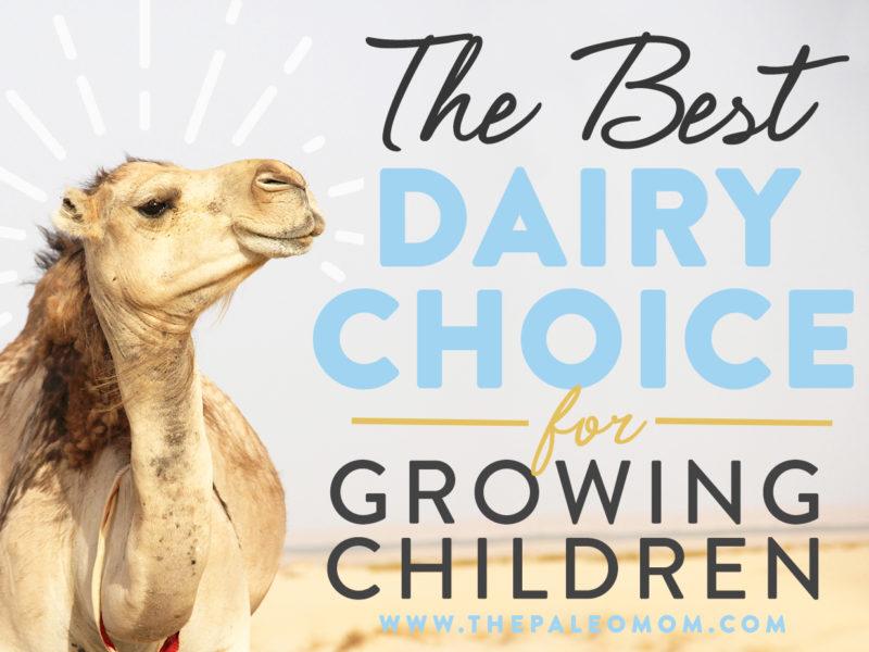 dairy choice